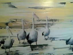 pelican-picture2.jpg