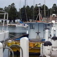 The Port of Port Fairy